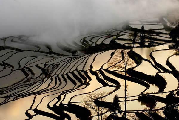 Rizieres-de-Yuanyang